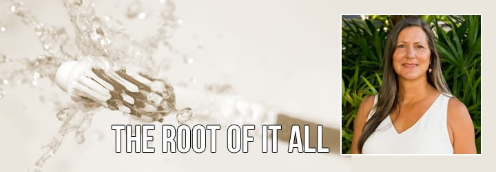 The Root of It All: