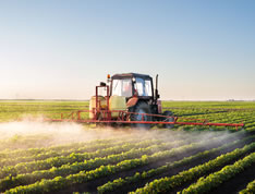 pesticides effects health dangers