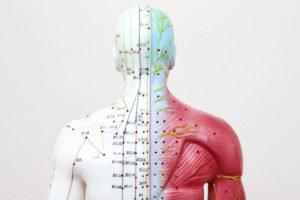 Meridian Health Analysis