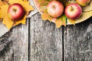 What is Primal Diet