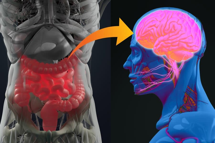 A leaky gut. We offer leaky gut syndrome treatment