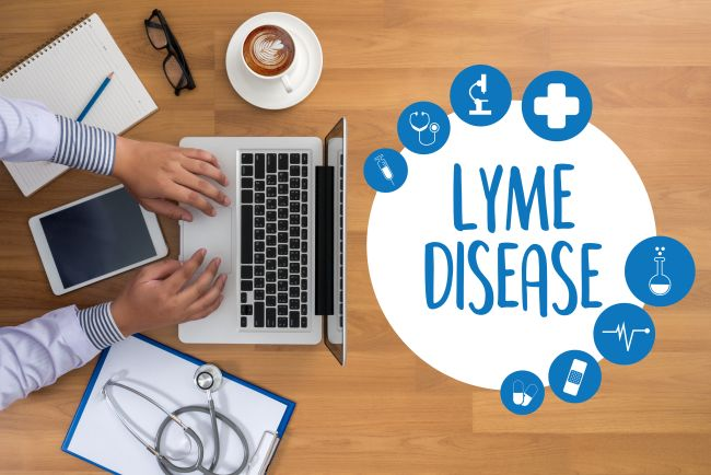 The importance of getting the correct Lyme disease diagnosis and treatment