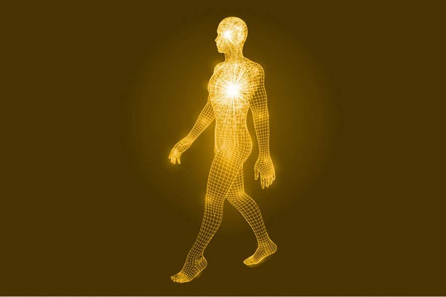 Bio-Energy Testing is a service which measures how well your mitochondria are functioning.