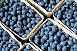 Berries in several boxes, indicating natural, healthy food recommended by LifeWorks doctors