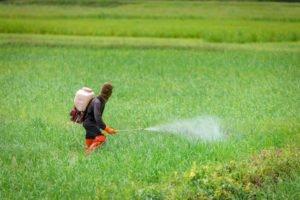 Pesticides sprayed on a field. Pesticides affect human health