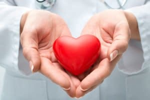 Doctor holding a small heart in his hands
