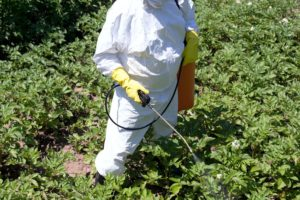 Pesticide spraying on Non-organic vegetables. We offer detox therapies