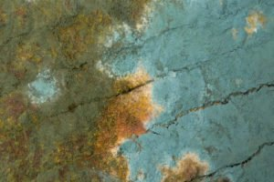 We treat the problems caused by mold