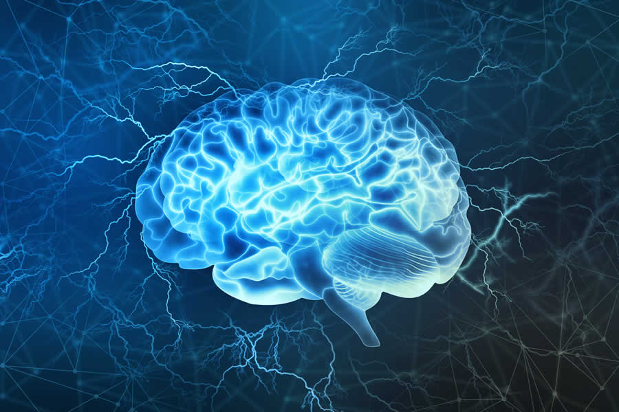The human brain. We offer alternative solutions for brain diseases