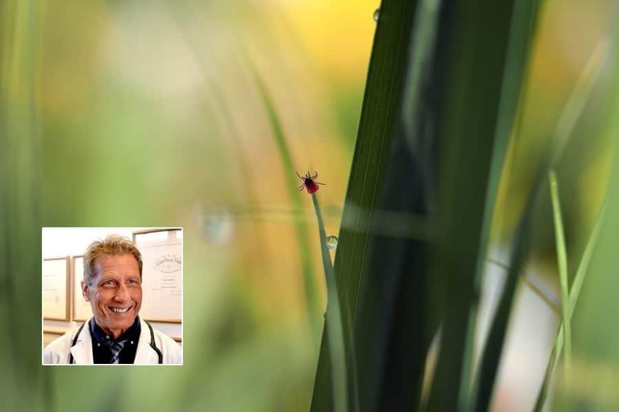 Lyme Disease Awareness Month #403