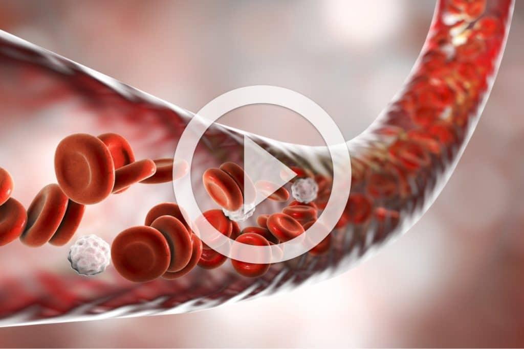 Extracorporeal Blood Oxygenation and Ozonation (EBOO)