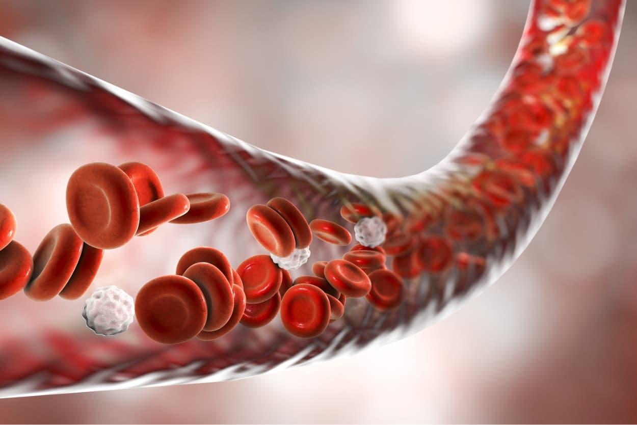 Extracorporeal Blood Oxygenation and Ozonation