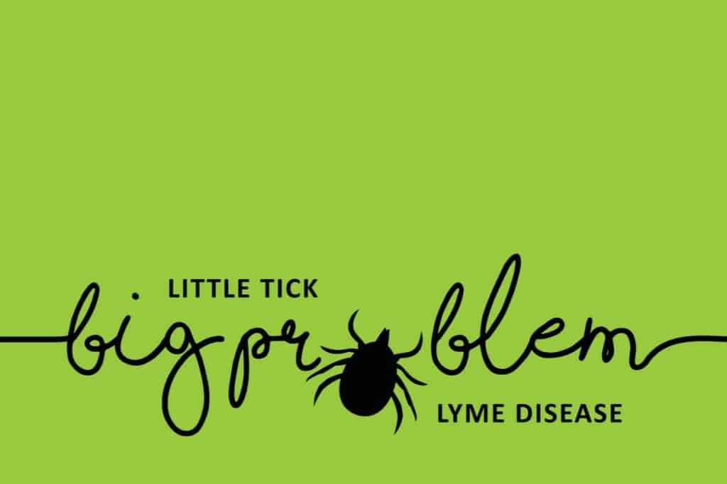 learn the process for accurately detecting lyme
